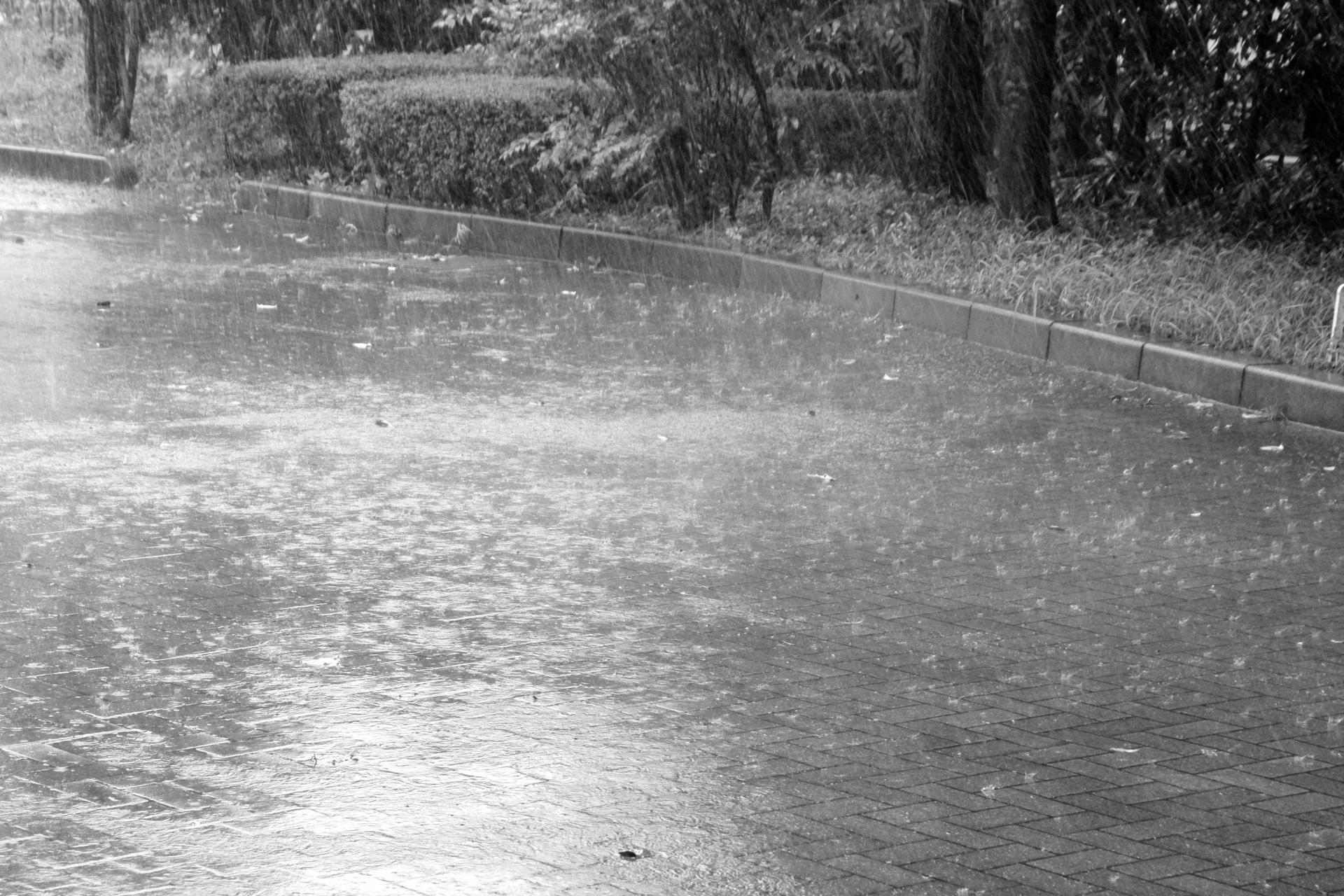 タクシー運転手は梅雨時に要注意!雨の日に事故が増える原因と対策